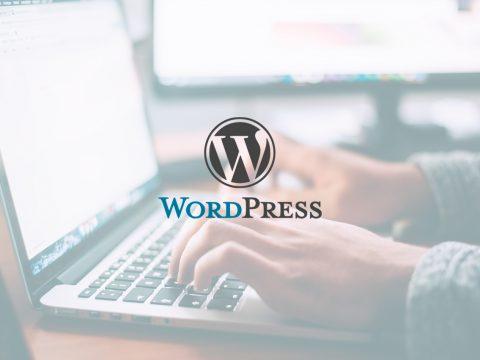 Curso WordPress en Bilbao: diseña tu propia página web